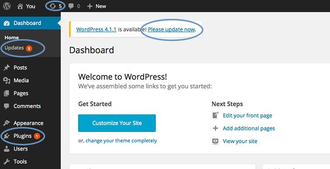 kat-love-update-wordpress-security
